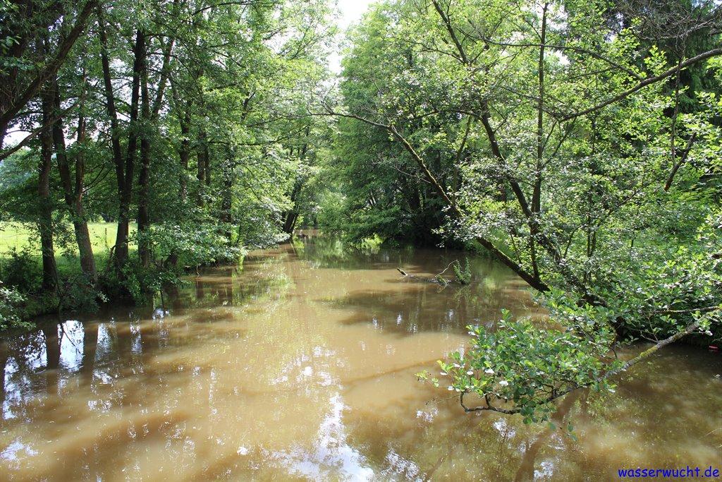Pegnitz bei Vorra mit leichtem Hochwasser